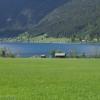 Paterzipf am Weißensee