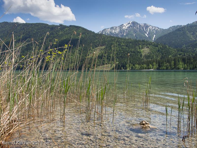 am Ufer des Weißensees