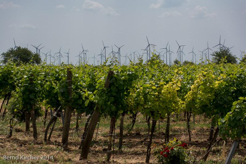 Wein und Strom