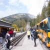 Zwischenstation beim Buchtelwirt - der Blick auf den Schneeberg ist famos.