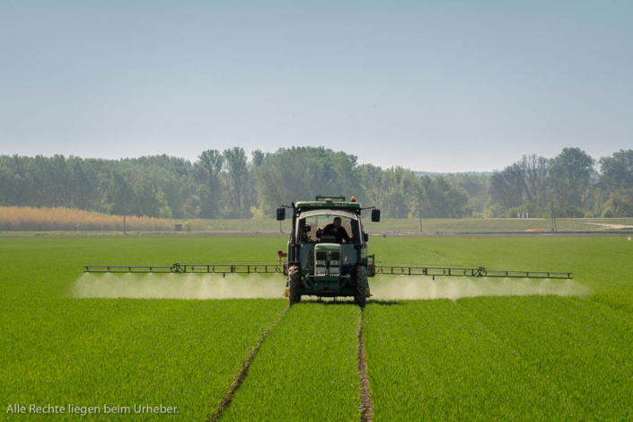 Landwirtschaft Marchfeld