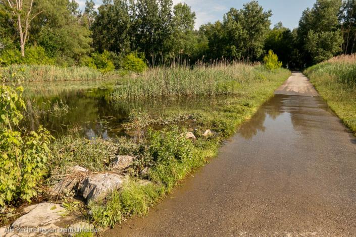 Überschwemmter Radweg